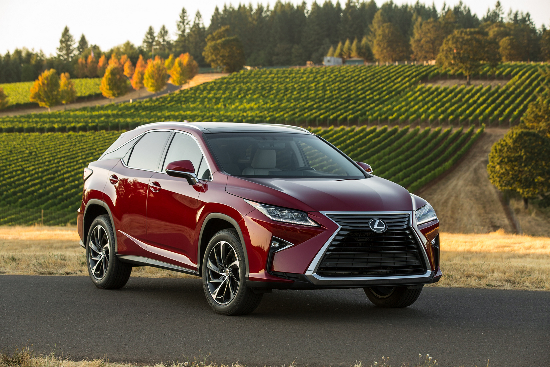 2016 Lexus RX 350 © Toyota Motor Corporation